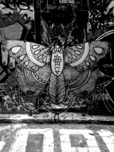 moth_photosh_2_by_a_waste_of_hate-d8yis0o
